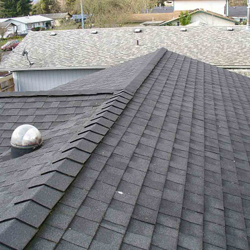 Langley Best Residential Roofers