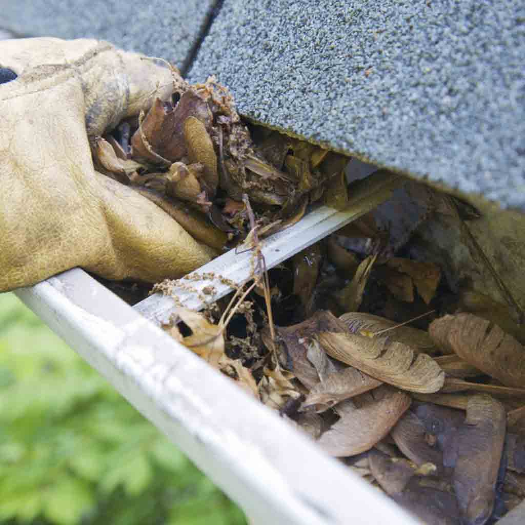 Residential Gutters Cleaning & Repairs Abbotsford
