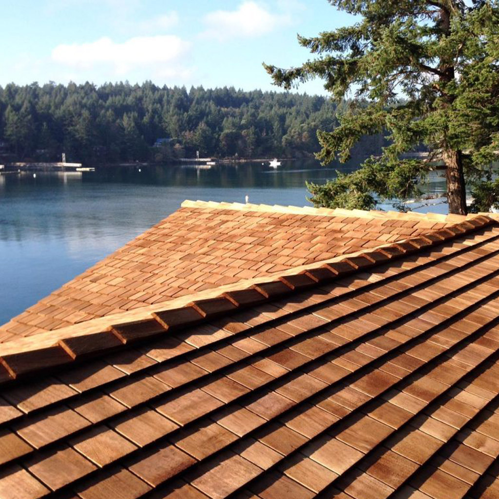 Abbotsford Cedar Roof Inspection
